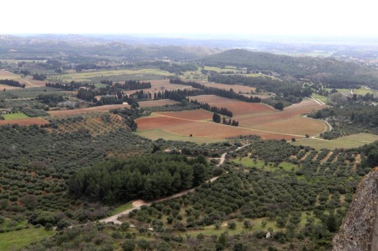 Provence Blog (38)
