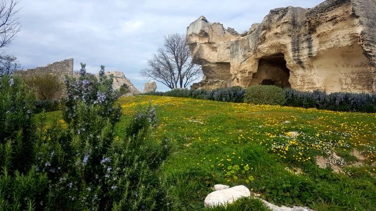 Provence Blog (6)