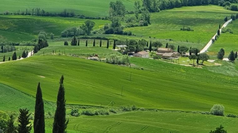 Italia - Celular - 2019 (783)