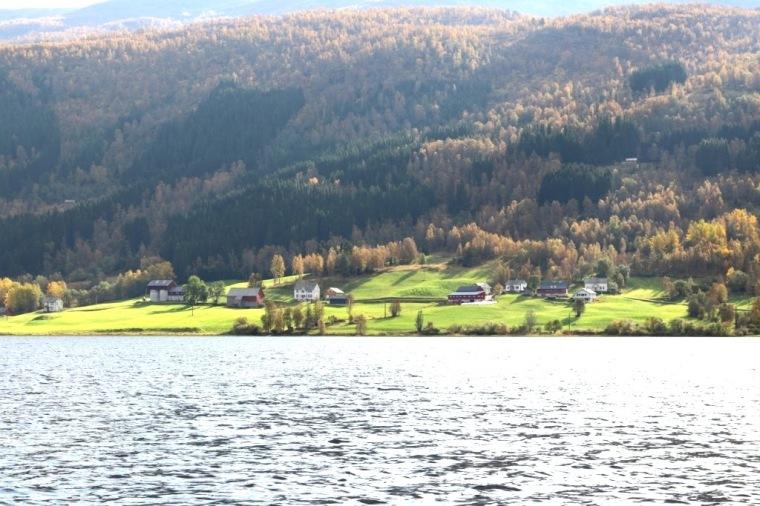 Fiordes Noruegueses Flam (19)