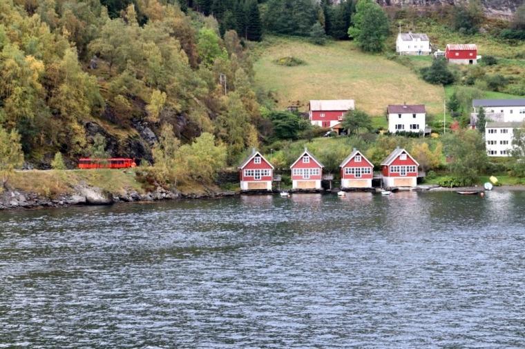 Fiordes Noruegueses Flam (53)