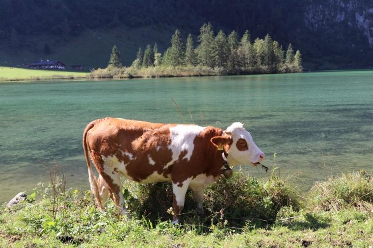 Berchtesgaden 2018 - 9 (401)