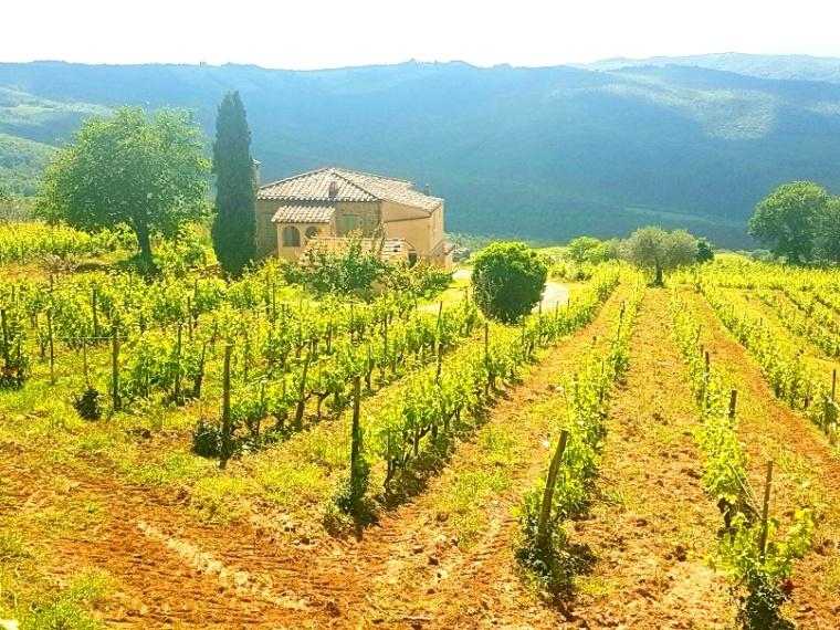 Toscana Pequeno 2018 - 5 (84)