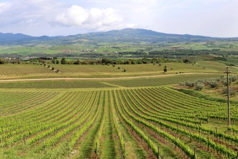 Toscana Pequeno 2018 - 4 (83)
