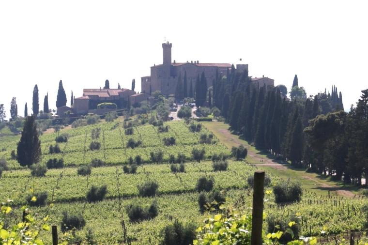 Toscana Pequeno 2018 - 5 (364)
