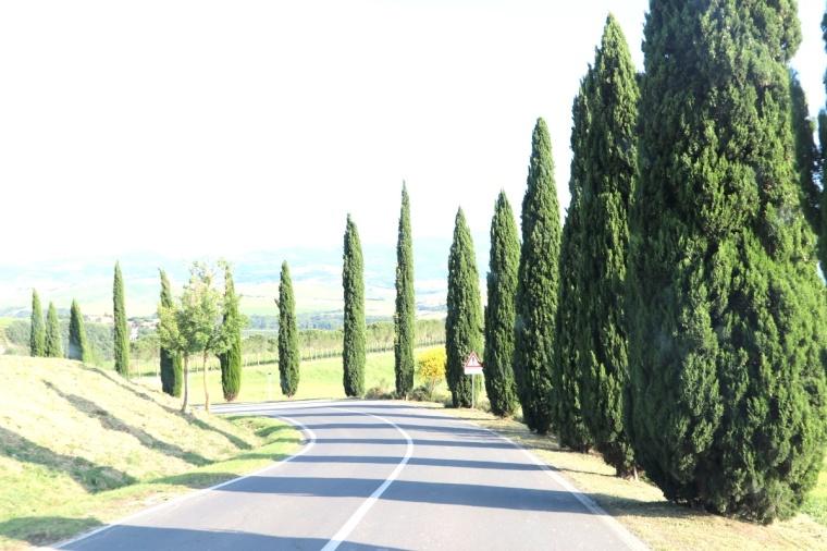 Toscana Pequeno 2018 - 5 (391)