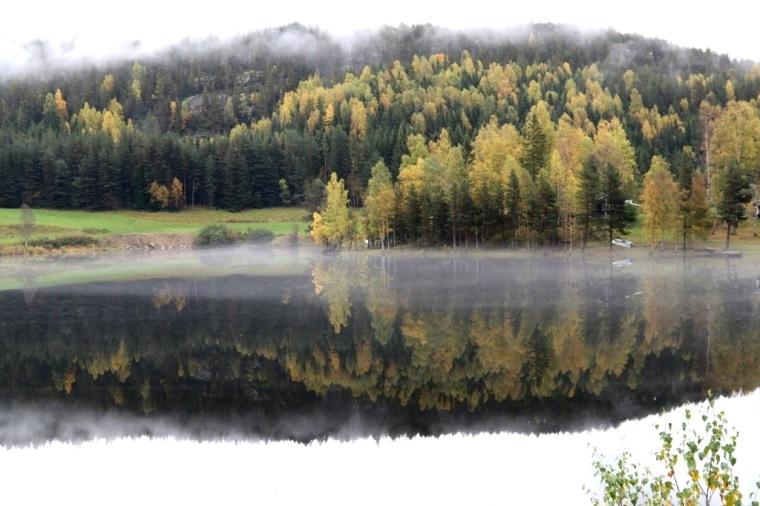Fiordes Noruegueses Balestrand Cel (5)