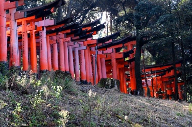 Fushimi Inari - Japao - 2019 (6)