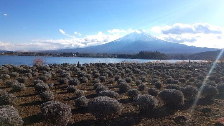 Japao 2019 Fuji (16)