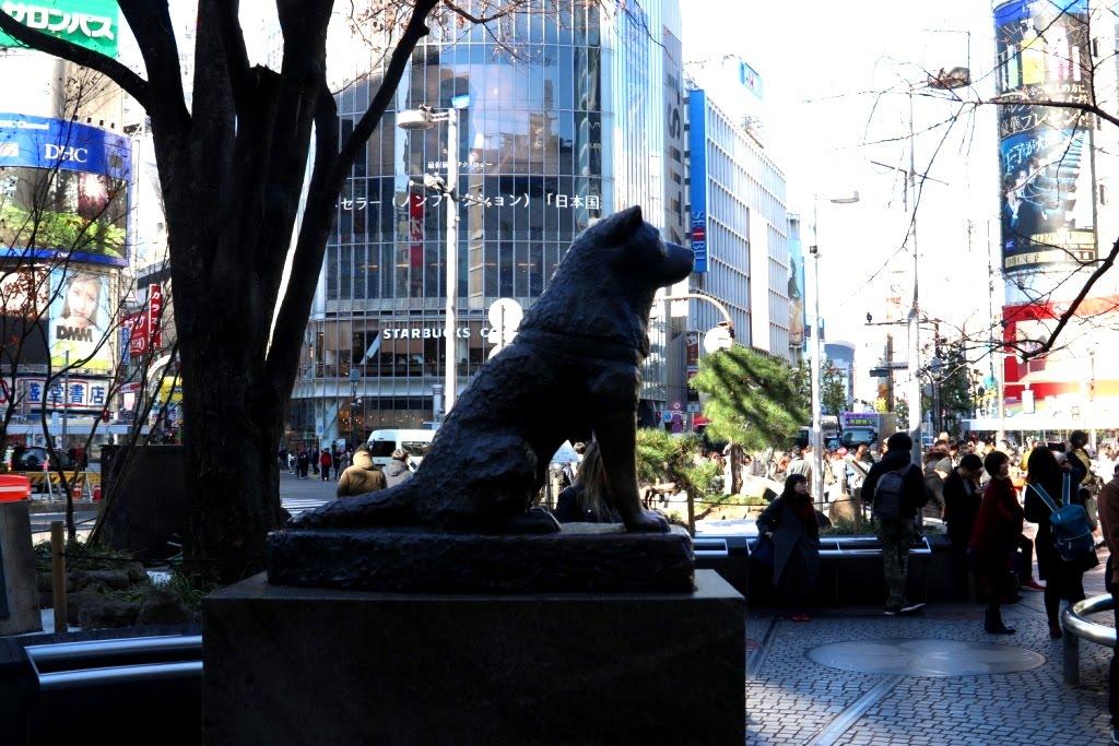 Tokio - Japao 2019 (60)