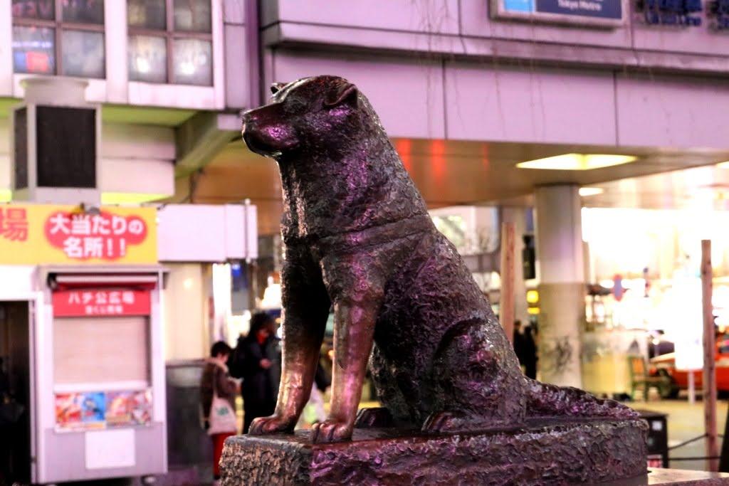 Tokio - Japao 2019 (69)