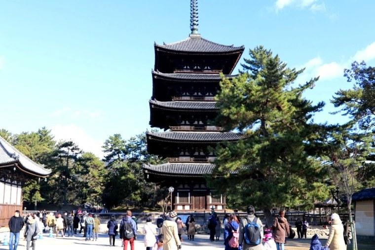 Nara Japao 2019 (2)