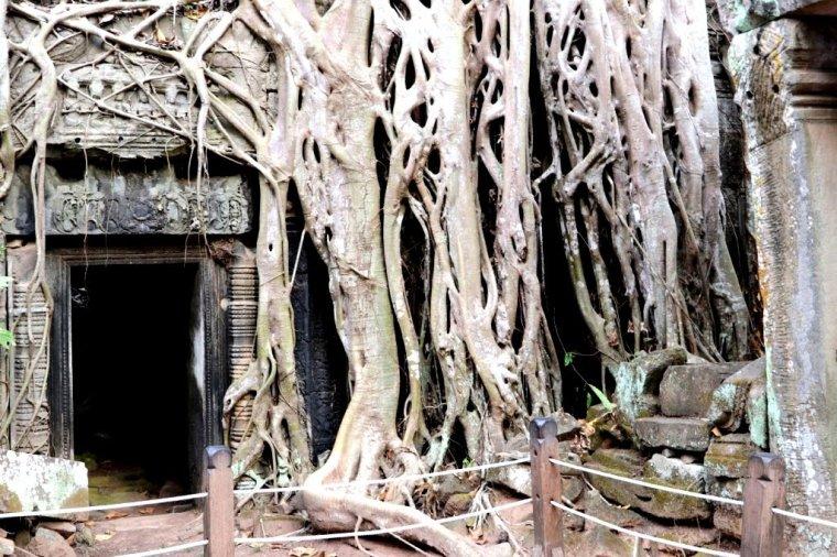 Angkor 2019 (14)