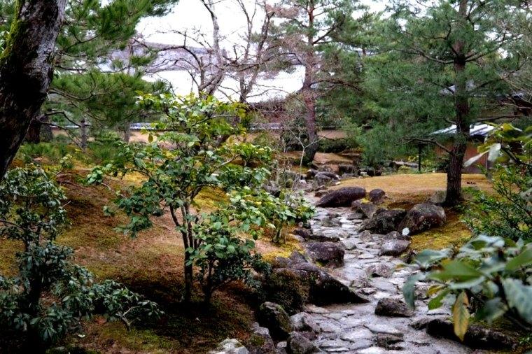 Kyoto - Japao - 2019 (14)