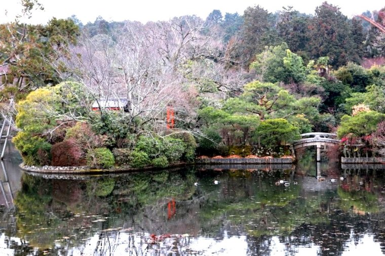 Kyoto - Japao - 2019 (16)